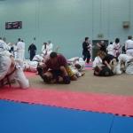 Sensei Miguel Camacho aus Spanien zeigt Mixed Martial Arts