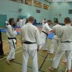 Shihan Mac Robertson zeigt Kyokoshin Karate