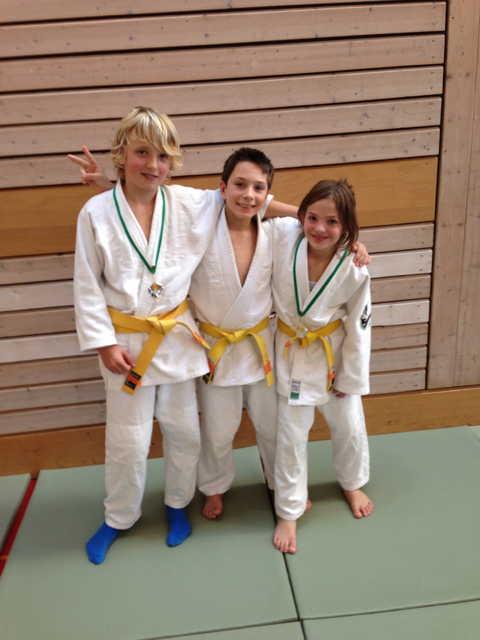 Unsere erfolgreichen Budokas an der OSEM in Wil/St.Gallen 2012
