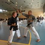 Tonfabumkai mit dem polnischen Meister Alexander Staniszef