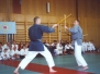 Kobudo Training in Wien 2000